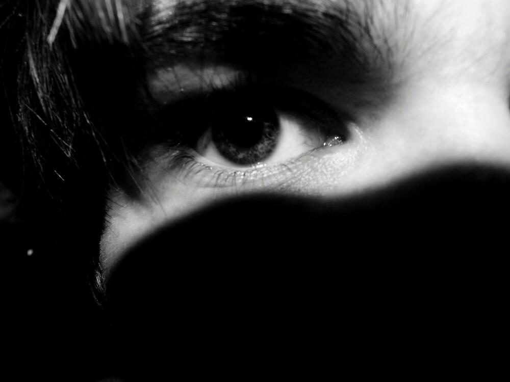 Hiding in the Shadows by Simon Bowker