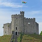 Keep at Cardiff by Graeme  Hyde