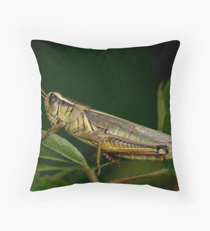Two-Striped Grasshopper Throw Pillow