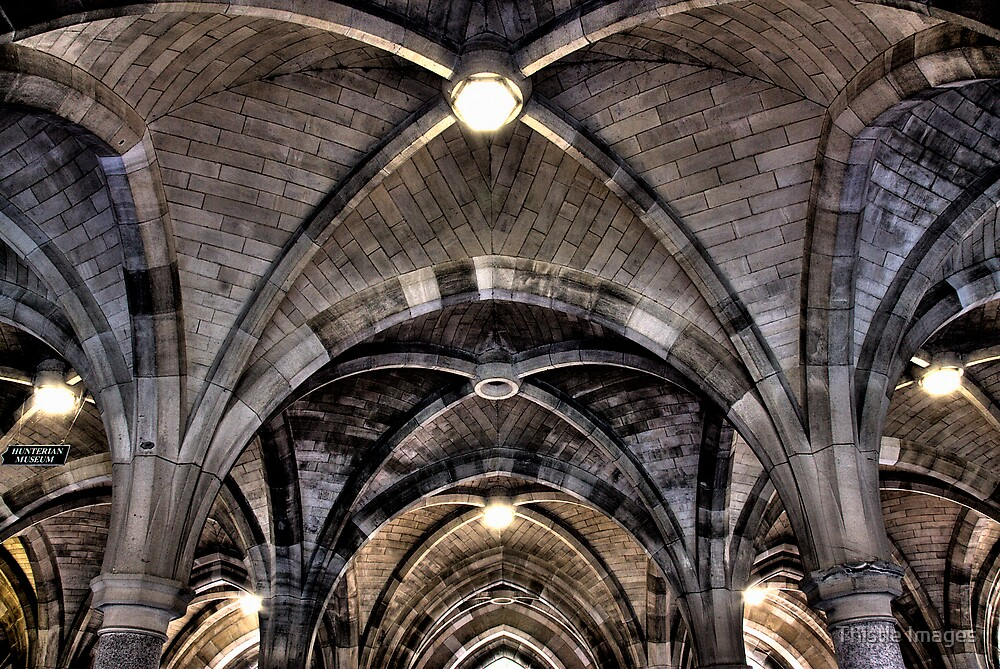 Cloisters ceiling by Thistle Images