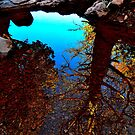 Sedona Reflections by JoAnn GLENNIE