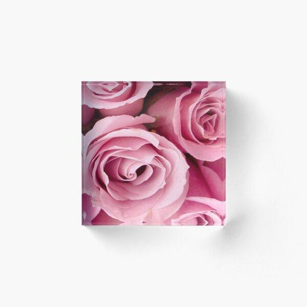 Pink Roses Acrylic Block