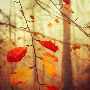 Autumn Leaves by DyrkWyst