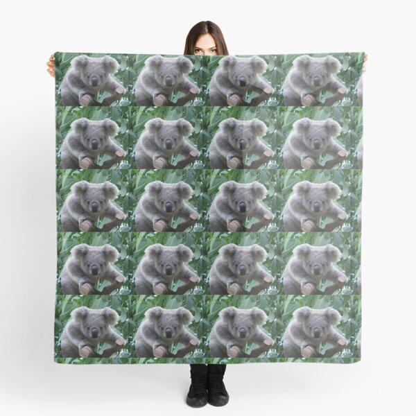 Koala y eucalipto Pañuelo