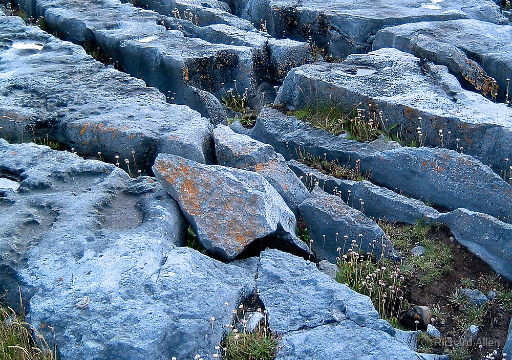 Limestone Pavement by Lea Valley Photographic