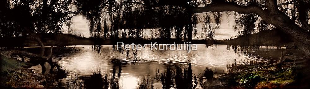 Tutira Lake  by Peter Kurdulija