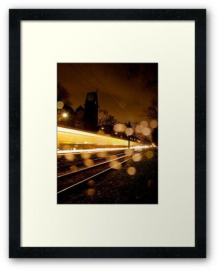 yellow in rain by Markus Mayer