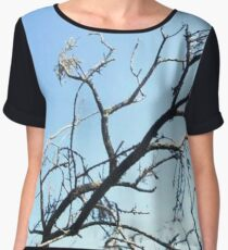 This Time Of Year Women's Chiffon Top