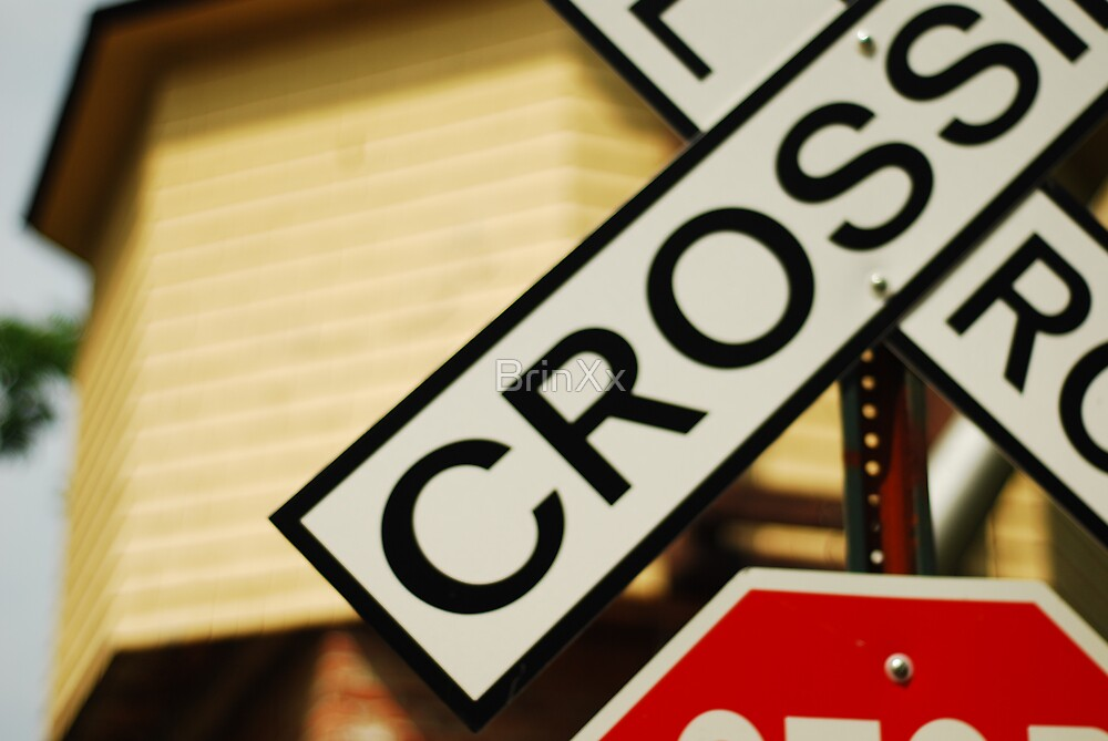 At Your Own Risk by BrinXx