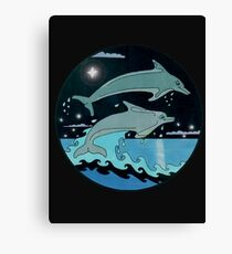 Dolphin`Leap for the Stars II'  Canvas Print