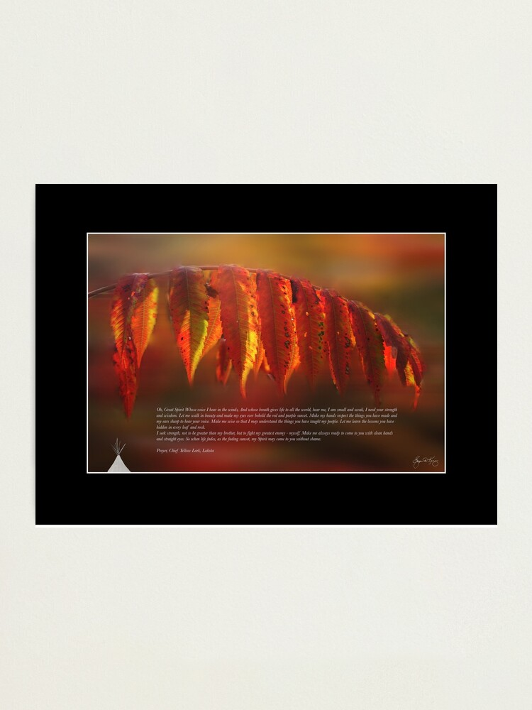 Alternate view of Lakota Prayer Poster - Indian Summer Image Photographic Print