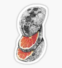 LUNAR FRUIT Sticker