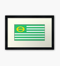 us ecology flag Framed Print