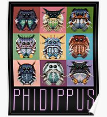Phidippus Portraits - Pixel Art Spider Poster - Thomas Shahan Poster