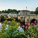 Cardigan Bridge by mlphoto