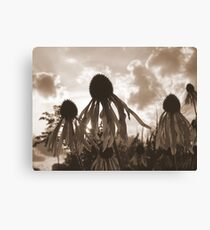 Return Canvas Print