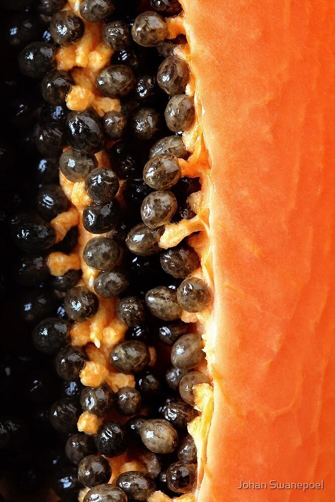 Papaya fruit halved macro by Johan Swanepoel