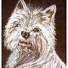 West Highland White Terrier by sharpie