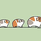 Mother Guinea-pig with Babies by zoel