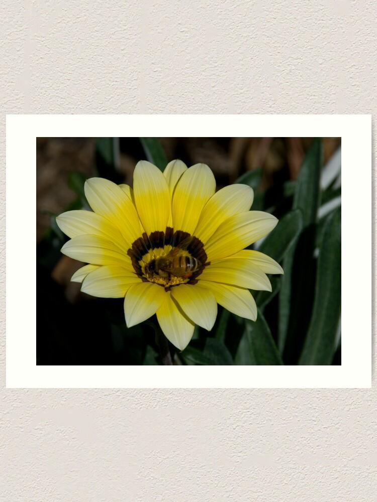 Alternate view of Bee Me Art Print