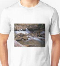 Lower Laurel  T-Shirt