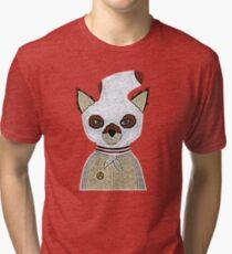 ash 2 Tri-blend T-Shirt
