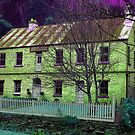Windsor House in Green, Walhalla by Bev Pascoe