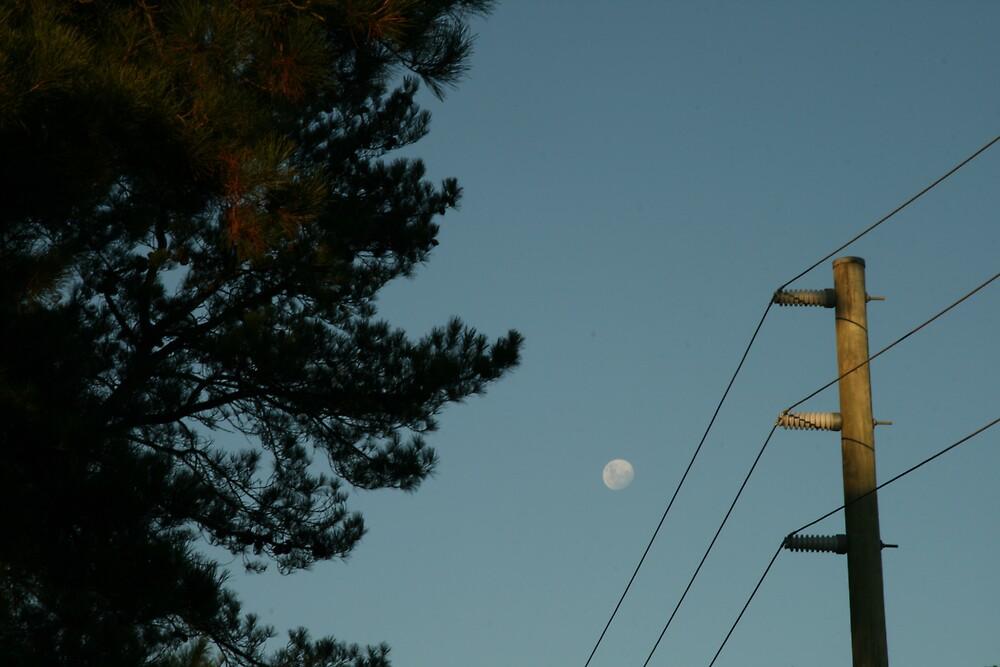ordinary moon by jayview