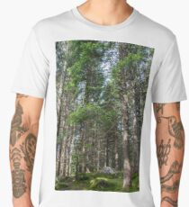 Coniferous trees stand on a green moss-covered ground Men's Premium T-Shirt