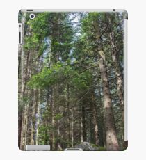 Coniferous trees stand on a green moss-covered ground iPad Case/Skin