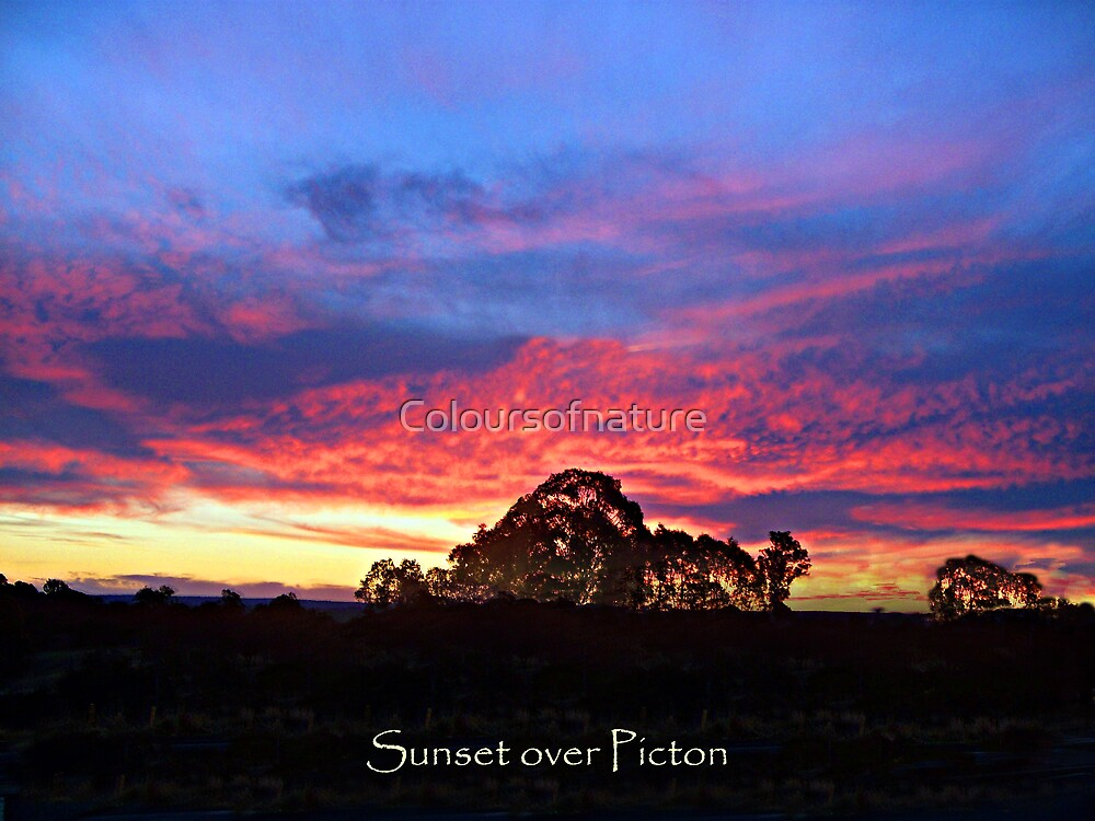 Sunset over Picton by Coloursofnature
