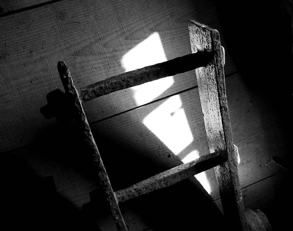 ladder shadow by ragman