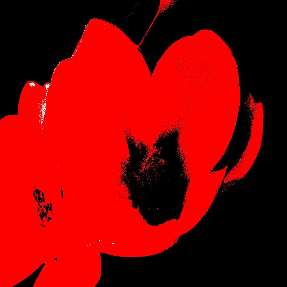 Hot Blooms II by Herb Dickinson