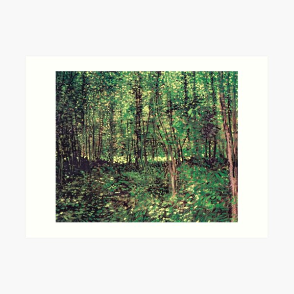 Trees and Undergrowth Art Print