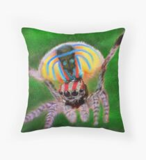 Peacock Jumping Spider Throw Pillow