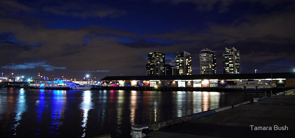 Docklands by Tamara Bush