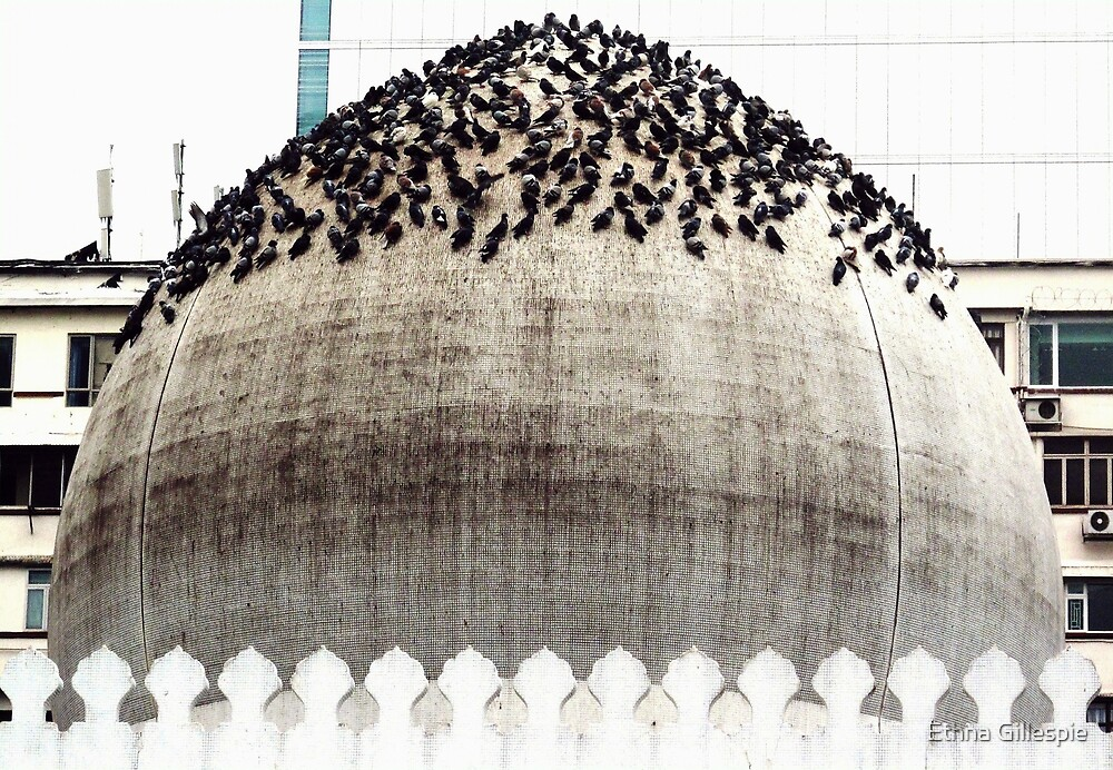 Dome of the Mosque  by Ethna Gillespie