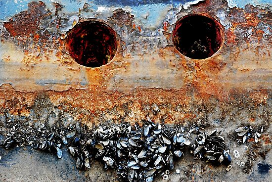 Barnacle Bill by Laurie Minor