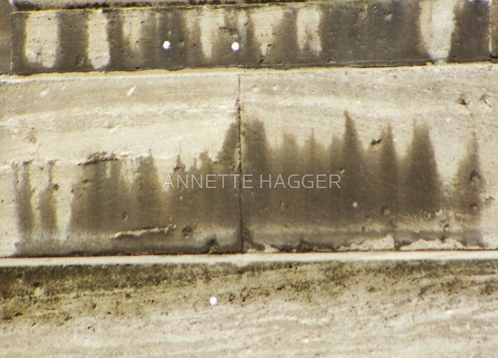 TREES 2 by ANNETTE HAGGER