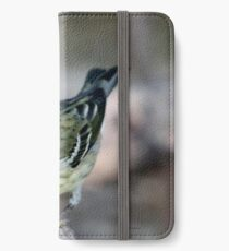blackpoll warbler iPhone Wallet