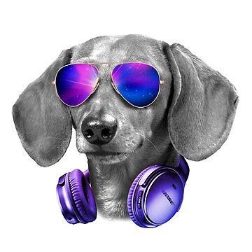 DJ Dachshund Music by mydachshund