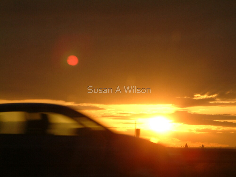 Homeward Bound by Susan A Wilson