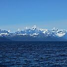 Prince William Sound by Gary L   Suddath