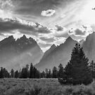 Teton County In Black and White by Bo Insogna