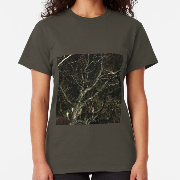 Iceland Tree at night branches Classic T-Shirt