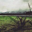 Pine Lake, Yukon by Marty Samis