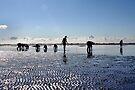 Mudflat Hiking by Jo Nijenhuis