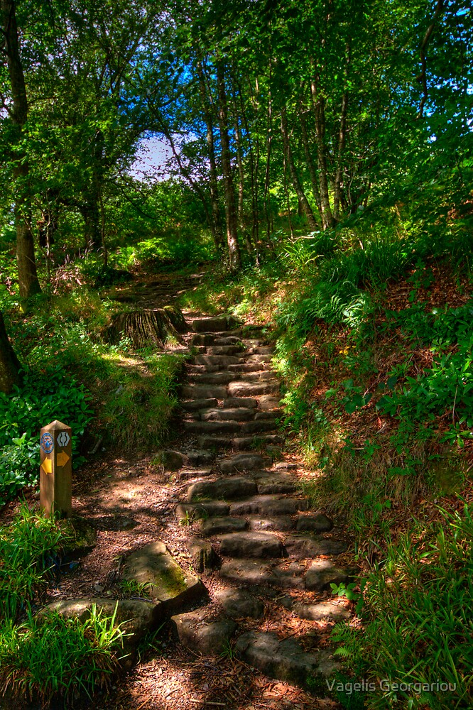 The path to....? by Vagelis Georgariou
