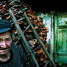 My Wood-shed by Zoltan Madacsi