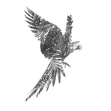 Jungle Parrot by Little-Rabbit